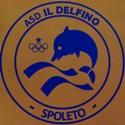 Il Delfino nuoto Spoleto