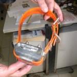 Cronaca, mette collari elettrici ai cani. Cacciatore denunciato