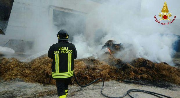 pompiere-vigili-fuoco